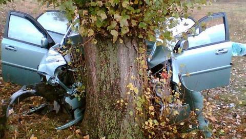 В аварии с деревом пострадали мужчина и женщина