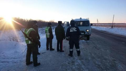 Саратовские пограничники задержали 470 нелегальных мигрантов