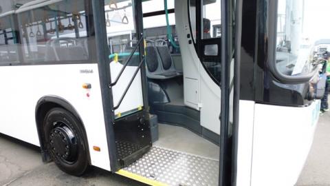 Полиция разыскивает сбившего лилипута водителя автобуса