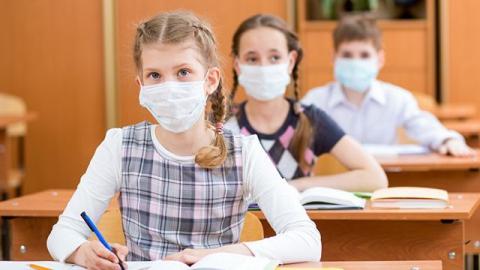 В Саратовской области семь школ закрыли на карантин по ОРВИ
