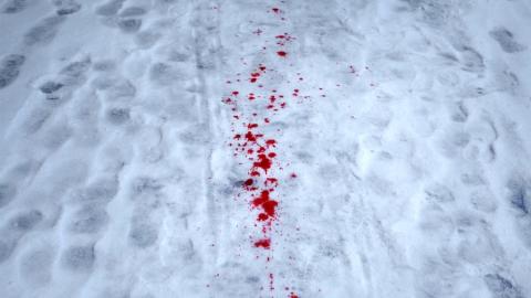 Женщина с пробитой головой насмерть замерзла возле дачи