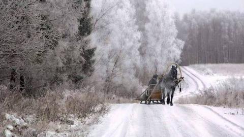 В Саратове обещают облачную погоду и небольшой мороз