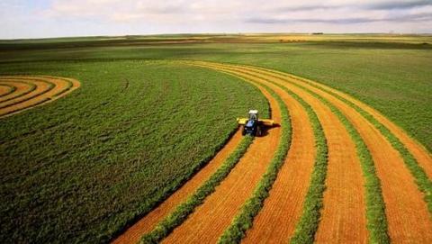 В Саратовской области индекс сельхозпроизводства увеличился на 7 процентов