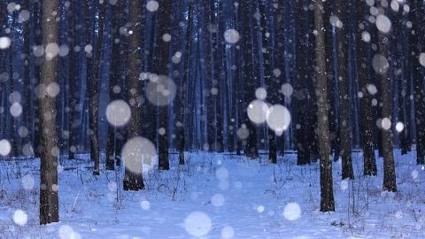 В Саратове будет слабый снег и мороз
