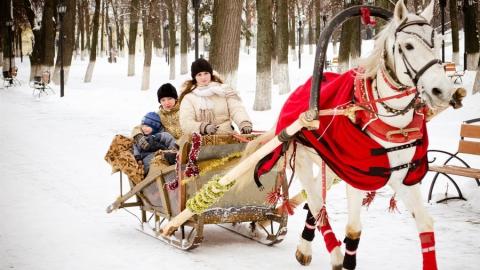 Саратовских детей бесплатно прокатят на санях с лошадьми