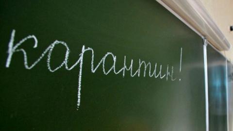 Всаратовских школах продлили карантин до6февраля