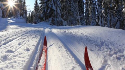 В Базарном Карабулаке на всероссийской гонке соберутся 12 тысяч лыжников