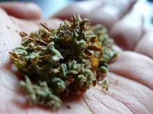 Пойман отбывающий наказание подросток с крупной партией наркотика