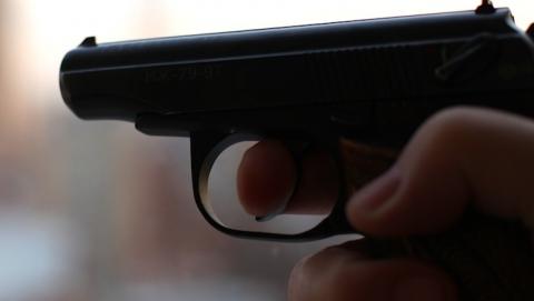 Мужчина грозил девочкам ружьем ивыстрелил водну изних