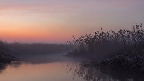 ВСаратове предполагается туман иухудшение видимости