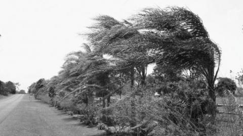 Всреду вРязани ожидаются сильный ветер иснег