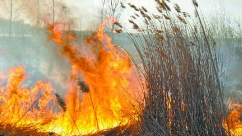 Энергетики готовы к пожароопасному периоду