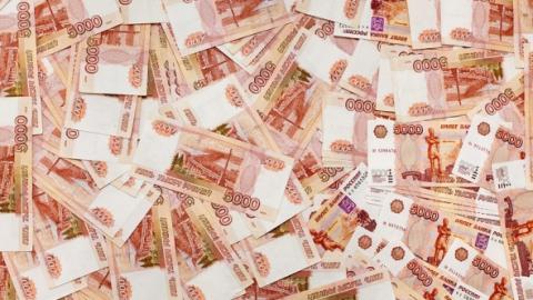Саратовский фермер обманул государство на8 млн, выдавая сарай замясной цех