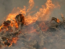 В сгоревшем доме погиб мальчик младшего школьного возраста