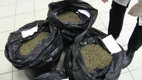 В Донгузе у местного жителя нашли более 24 кг марихуаны