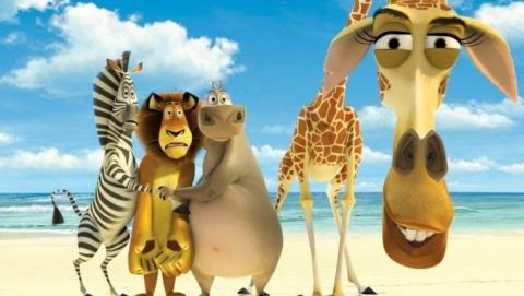 """Жителей Саратова приглашают посетить экзотический """"Мадагаскар"""""""