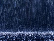 Прогноз погоды на 4 декабря. Дождь при юго-восточном ветре