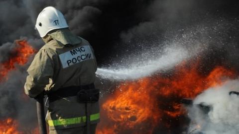 Пенсионерка с сыном погибли на пожаре в Балашове