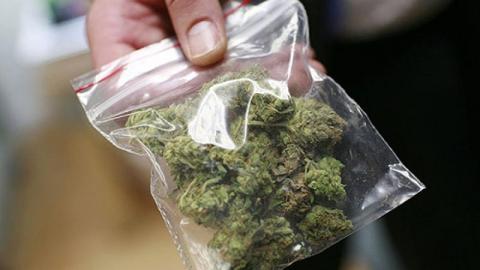 В Саратове таможенника задержали с марихуаной