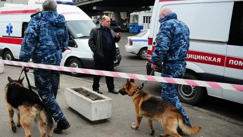 В Энгельсе полицейские искали бомбу в машине девушки на СТО