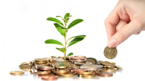 Организации по поддержке бизнеса получат 11 млн руб на развитие