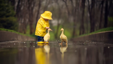 В Саратове будет ветрено и дождливо
