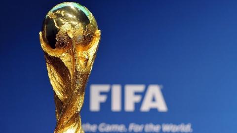 В Саратов привезут Кубок чемпионата мира по футболу