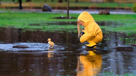 В Саратове ожидается дождь и гроза