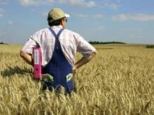 Панков: Саратовская область - в первой тройке по производству зерна
