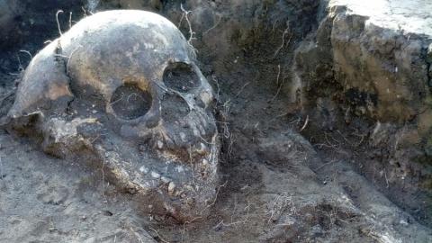 Саратовские археологи при раскопках в Укеке нашли монеты 1360 года