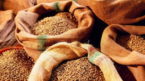 Саратовские аграрии собрали 340 тысяч тонн зерна