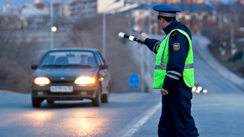 Водитель получил год колонии за избиение остановившего его машину сотрудника ДПС