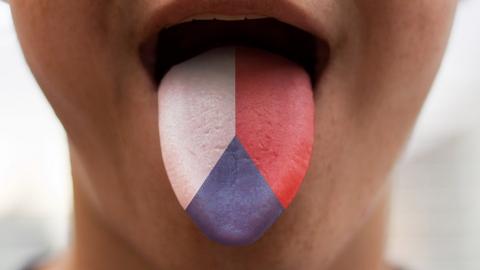 Сложности при изучении чешского языка для начинающих