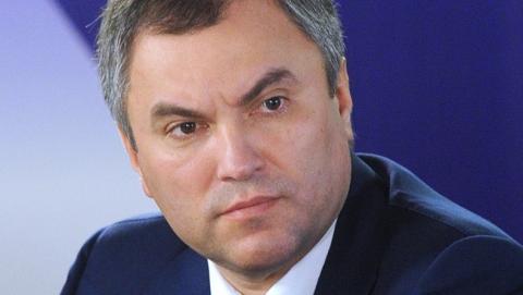 Володин поручил Панкову стать представителем жителей таунхаусов на Питерской в суде