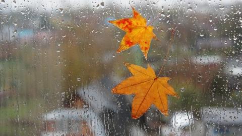 В Саратове обещают дождь и до +24 градусов
