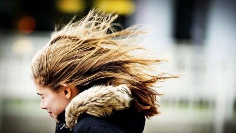 ГУМЧС предупреждает осильном порывистом ветре