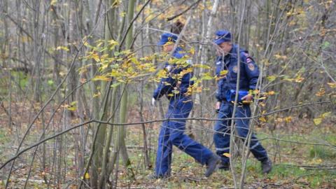 Под Балашовом спасатели вывели из леса семью грибников