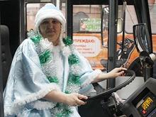 Между Энгельсом и Саратовом запускают троллейбус на автономном ходу