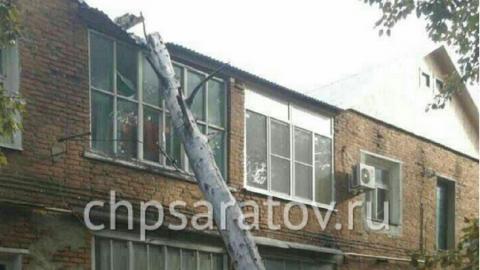В Саратове дерево рухнуло на двухэтажный дом