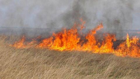 В Дергачевском районе сгорело четыре гектара степи