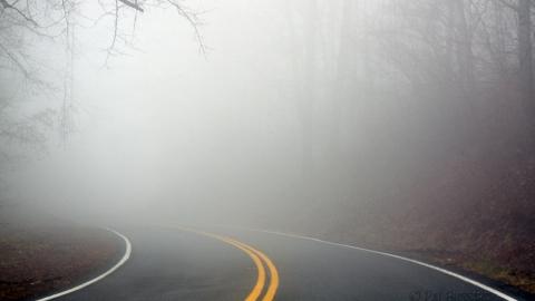 Синоптики обещают вСаратовской области сильный туман изаморозки