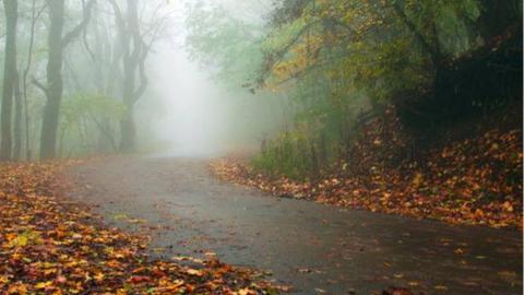 В Саратовской области прогнозируют похолодание, мокрый снег и туман