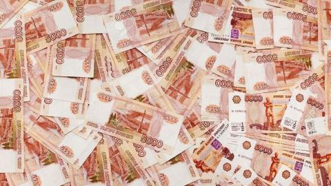 Депутатов заинтересовало решение минфина о сокращении госдолга путем выплаты бюджетных кредитов
