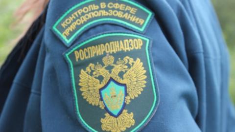 В Саратове бывший сотрудник Росприроднадзора обвиняется в получении взяток
