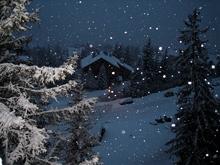 Прогноз погоды на 10 января. Мягкая зима