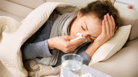 ВЯрославле занеделю заболело неменее  5 тыс.  человек— Вспышка ОРВИ
