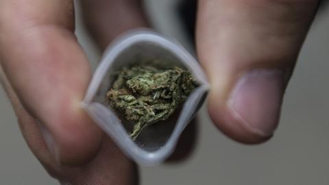 Неуспевшие реализовать наркотики закладчики получили по9,5 года