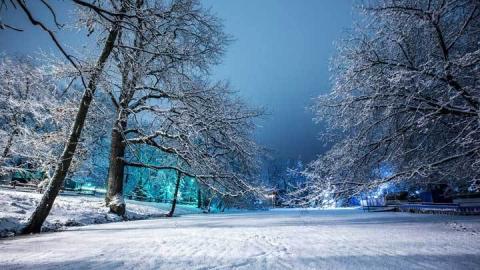 Саратовцам обещают снег и до шести градусов мороза