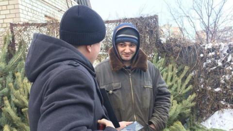 В Саратове за незаконную продажу елок оштрафовали предпринимателя