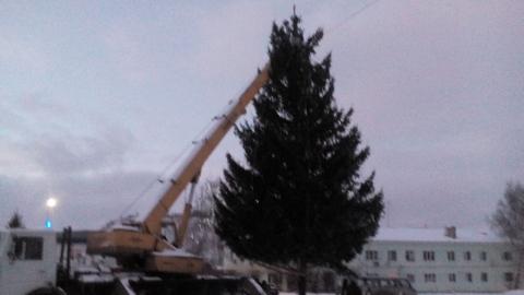 Упавшую на площади в Лысых Горах елку вернули на место